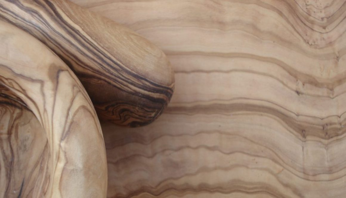 The Olive Wood : living matter